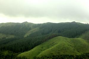 Hills, Vagamon