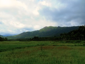 Scenic view over the mountains, Thrikkaipetta
